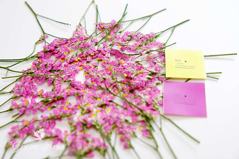 ピンクのスターチスの押し花