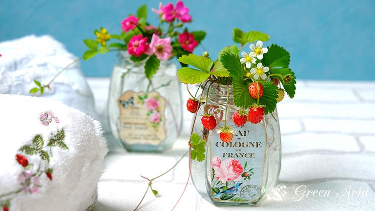 高さ10cmほどのガラスの瓶に生けられたワイルドストロベリー。ガラスのアンティーク調の水色のラベルとワイルドストロベリーの姿がマッチしていて可愛い。左には、ウエッジウッドのワイルドストロベリー柄のタオルが置かれている。