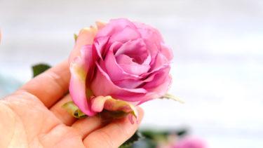 上から見たバラは、落ち着いた青みのピンクで7分咲き。