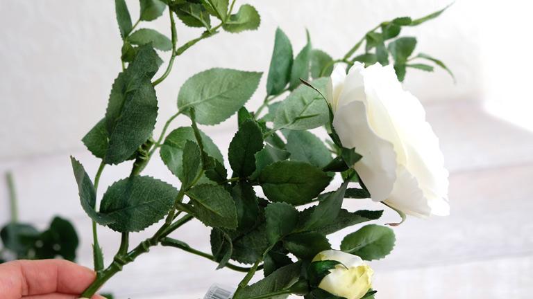 白い薔薇一輪とつぼみ付きのローズ。葉っぱが多く花が大きい。