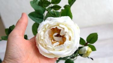キャベッジローズ A-31916|ASCA造花