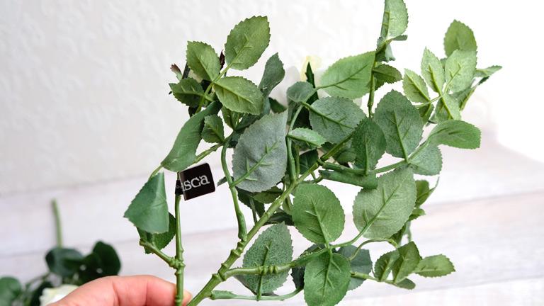 キャベッジローズの葉っぱは沢山付いていてフラワーアレンジメントにも最適。