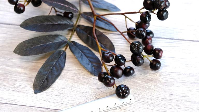 一粒の実が黒く大きい葉っぱも黒い実のアーティフィシャルフラワーの枝もの。