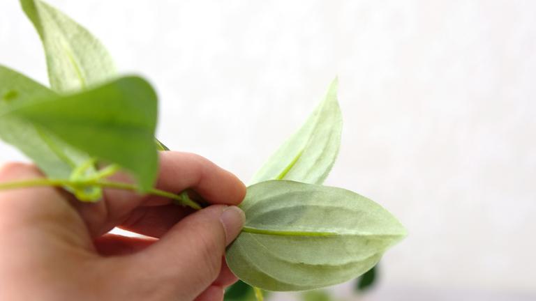 ASCA造花のリキュウソウの葉の裏。表の明るい葉よりももっと白っぽく、葉脈まで繊細に再現されている。