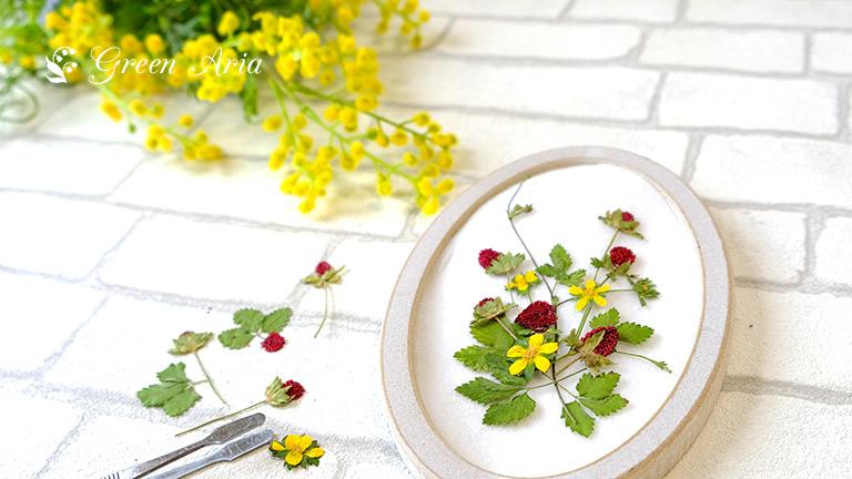 15cmほどの楕円形の額縁の中に、ヘビイチゴの葉や実、黄色い花をデザイン。