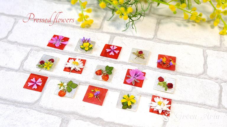 3cm角の赤と白の貝殻のシートノ上に、ヘビイチゴやワイルドストロベリーや白やピンクのお花をのせている。