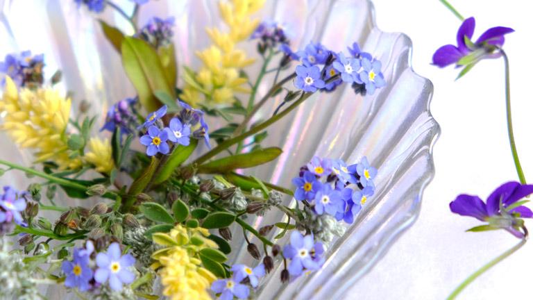 水色の忘れな草と黄色の葉とマイクロビオラの紫。
