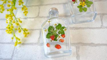 ワイルドストロベリーの押し花